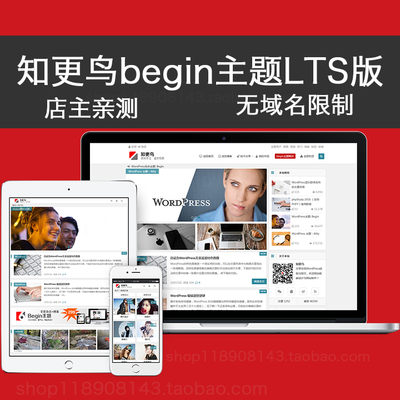 WP博客主题模板知更鸟begin LTS新主题WordPress模板